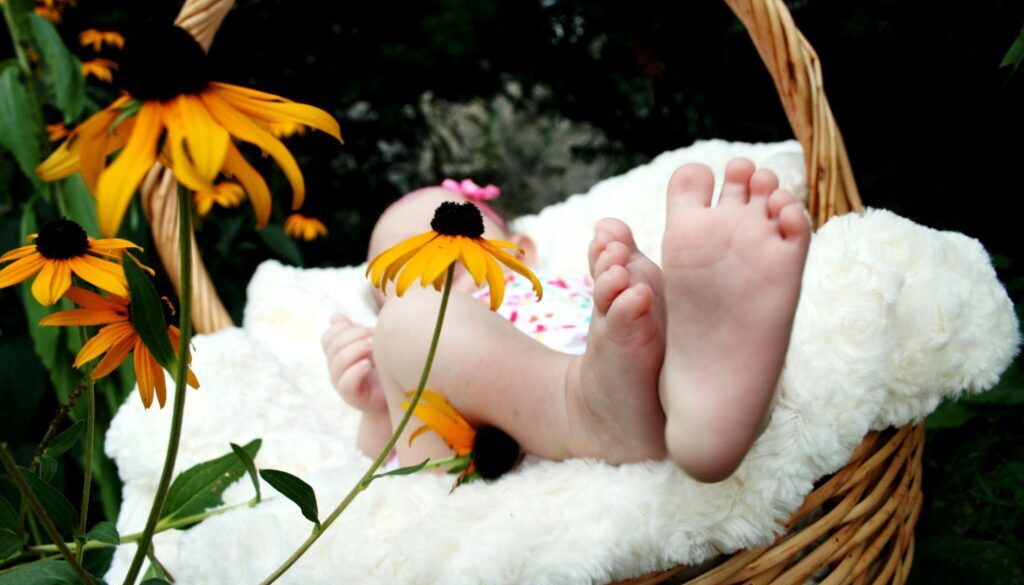 A baby in a wicker basket in an outdoor setting with only the baby's feet showing