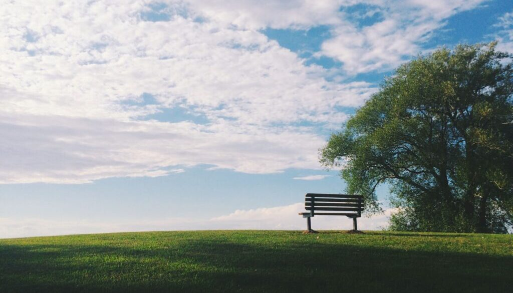 an empty bench on the crest of a grassy green hill by a solitary tree against a cloudy blue sky